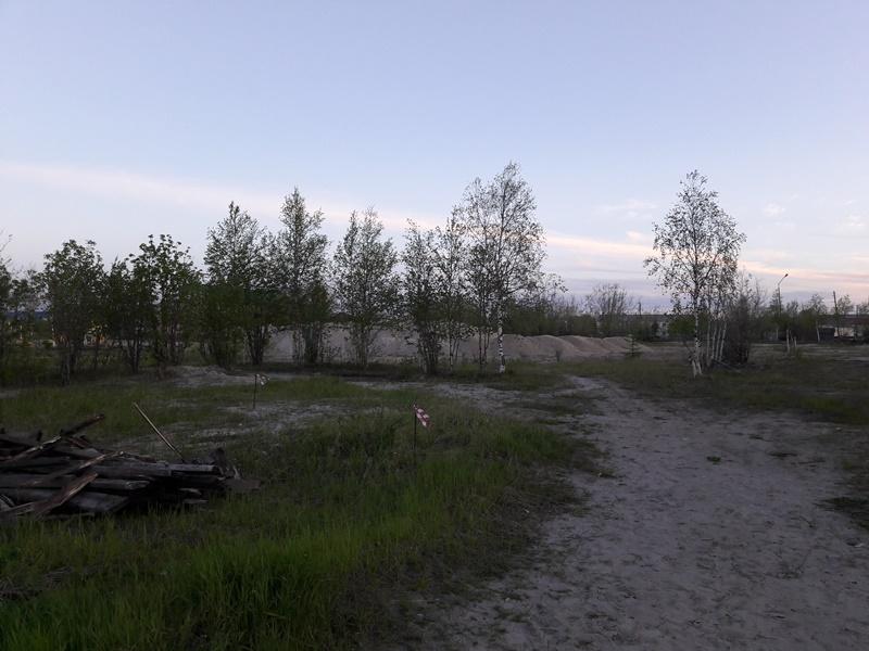 парк 24.06.19г 2