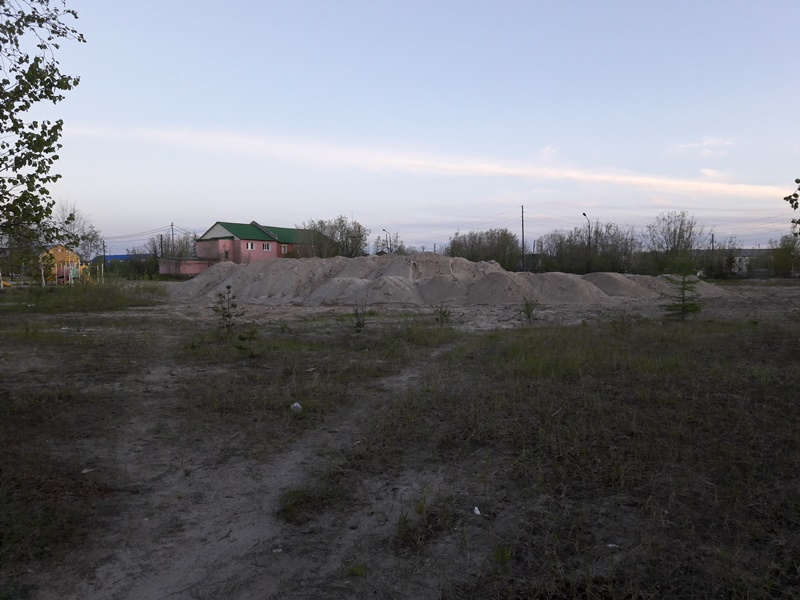 парк 24.06.19г 3